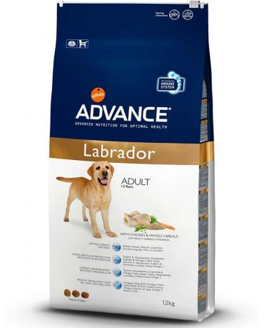 Сухой корм корм Advance Affinity для лабрадоров, Labrador Retriever
