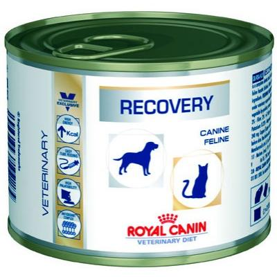Консервы Royal Canin диета для собак и кошек в период анорексии, выздоровления (Recovery Feline/Canine)